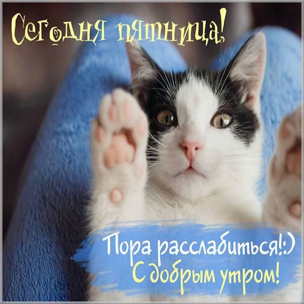 Прикольная позитивная картинка доброе утро с пятницей - скачать бесплатно на otkrytkivsem.ru