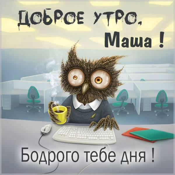 Прикольная смешная картинка доброе утро Маша - скачать бесплатно на otkrytkivsem.ru