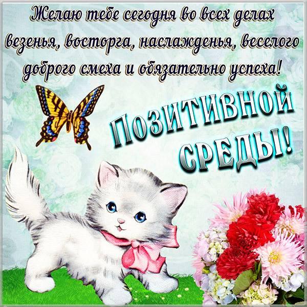 Прикольная смешная картинка про среду с поздравлением - скачать бесплатно на otkrytkivsem.ru