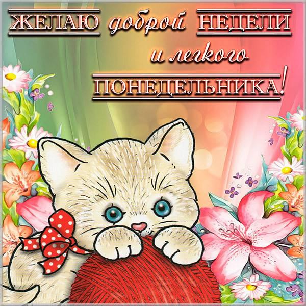 Прикольная смешная картинка с надписью легкого понедельника - скачать бесплатно на otkrytkivsem.ru