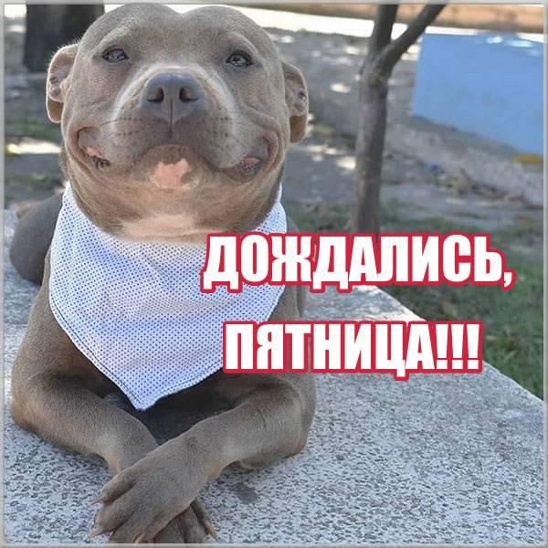Прикольная виртуальная открытка с пятницей - скачать бесплатно на otkrytkivsem.ru