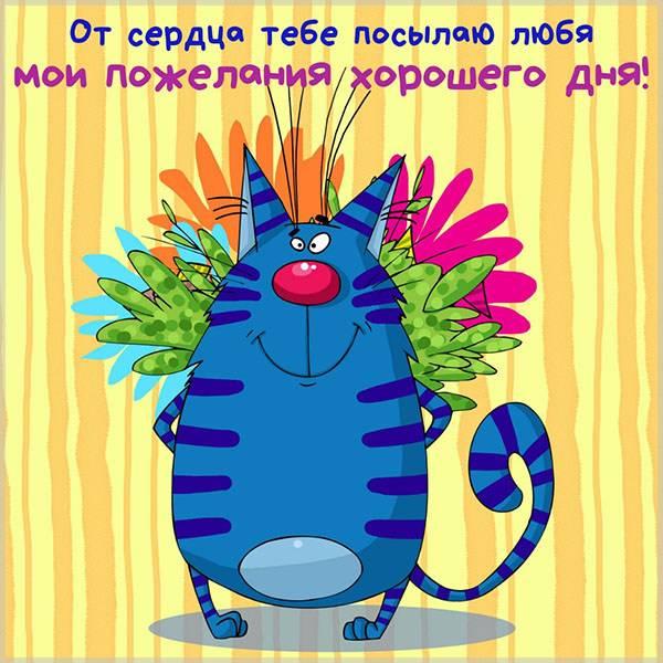 Прикольное фото хорошего дня - скачать бесплатно на otkrytkivsem.ru