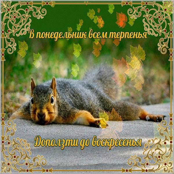 Прикольное поздравление с понедельником в открытке - скачать бесплатно на otkrytkivsem.ru