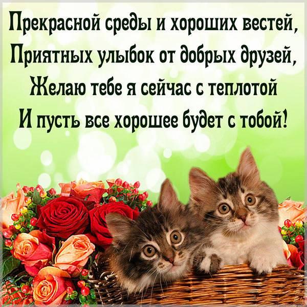 Прикольное пожелание хорошей среды в картинке - скачать бесплатно на otkrytkivsem.ru