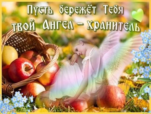 Пусть бережет тебя твой ангел