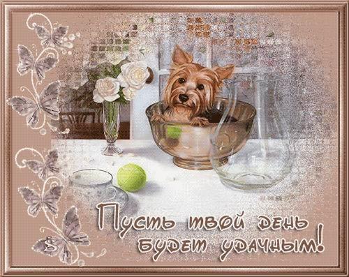 Пусть твой день будет удачным - скачать бесплатно на otkrytkivsem.ru