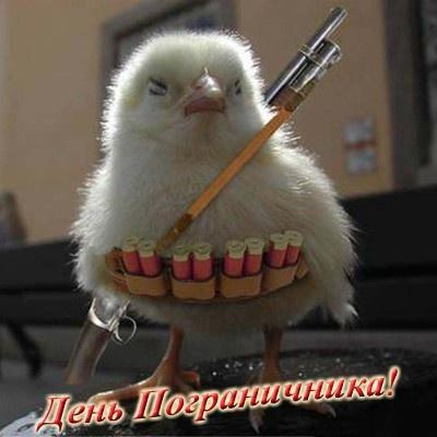 С Днем пограничника прикольная открытка - скачать бесплатно на otkrytkivsem.ru