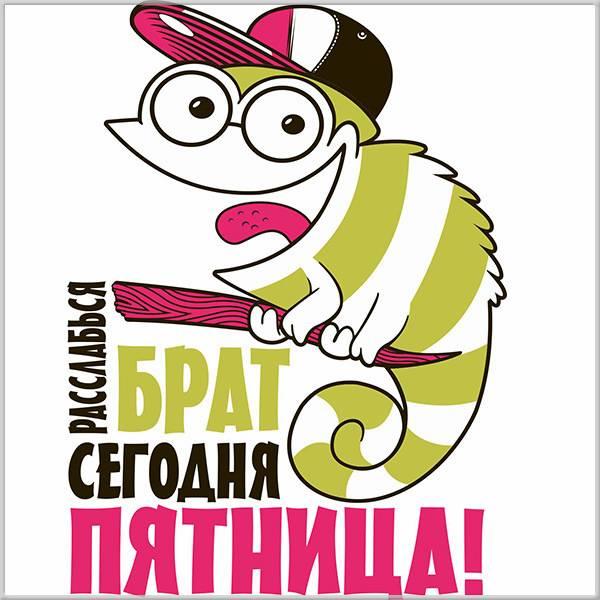 Смешная картинка для мужчин с пятницей - скачать бесплатно на otkrytkivsem.ru