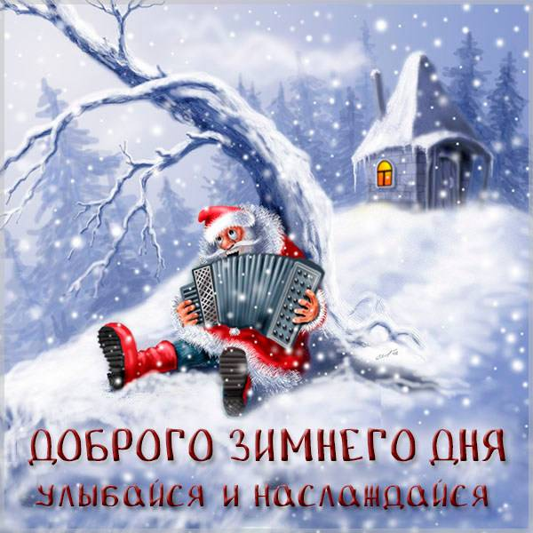 Смешная картинка доброго зимнего дня - скачать бесплатно на otkrytkivsem.ru