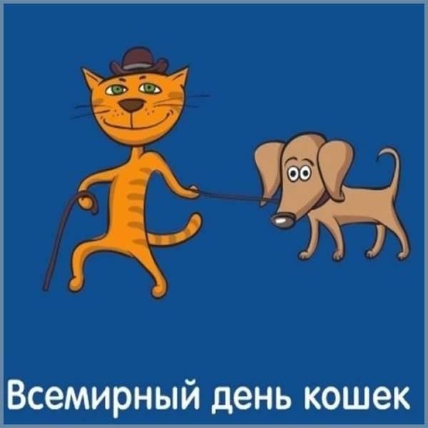 Смешная картинка на день кошек - скачать бесплатно на otkrytkivsem.ru