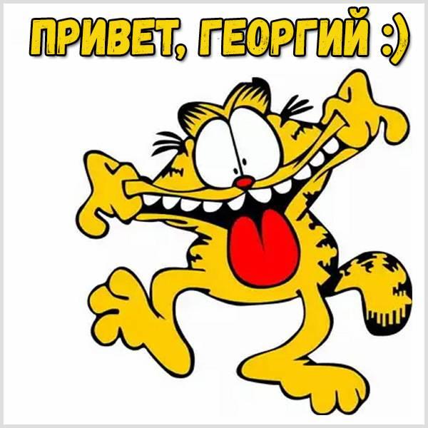 Смешная картинка привет Георгий - скачать бесплатно на otkrytkivsem.ru