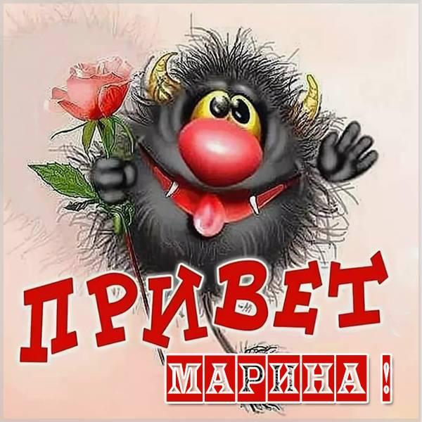Смешная картинка привет Марина - скачать бесплатно на otkrytkivsem.ru