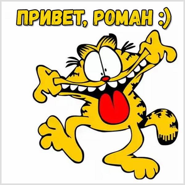 Смешная картинка привет Роман - скачать бесплатно на otkrytkivsem.ru