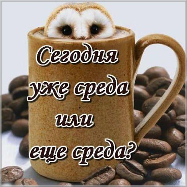 Смешная картинка про день недели среду - скачать бесплатно на otkrytkivsem.ru