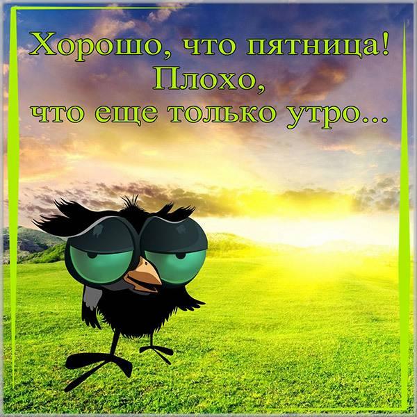 Смешная картинка про утро пятницы - скачать бесплатно на otkrytkivsem.ru