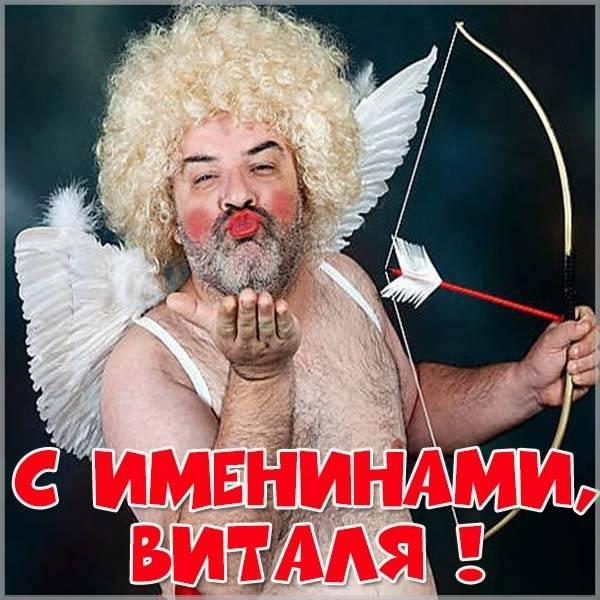 Смешная картинка с днем Витали - скачать бесплатно на otkrytkivsem.ru