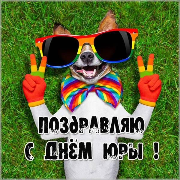Смешная картинка с днем Юры - скачать бесплатно на otkrytkivsem.ru
