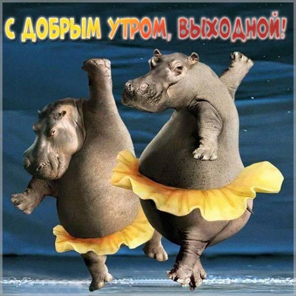 Смешная картинка с добрым утром выходной - скачать бесплатно на otkrytkivsem.ru