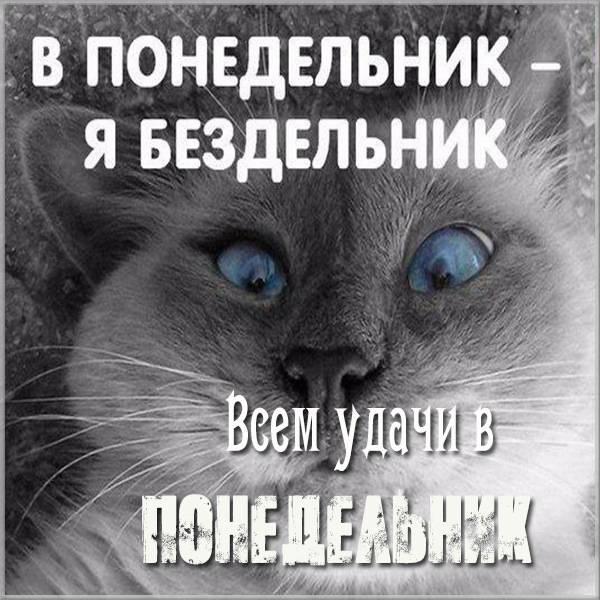 Смешная картинка удачного понедельника - скачать бесплатно на otkrytkivsem.ru
