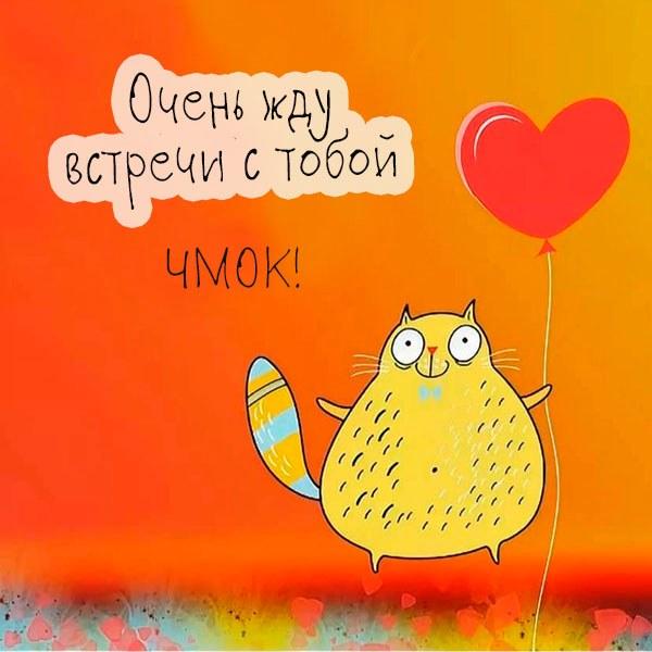 Смешная картинка жду встречи с тобой - скачать бесплатно на otkrytkivsem.ru