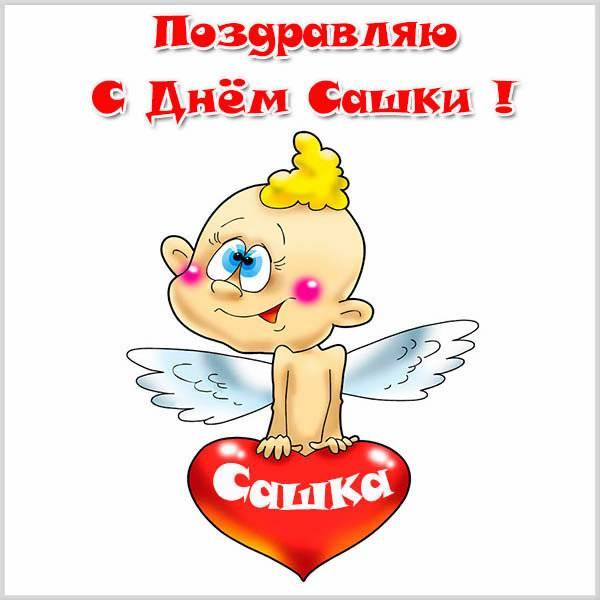 Смешная открытка с днем Сашки - скачать бесплатно на otkrytkivsem.ru