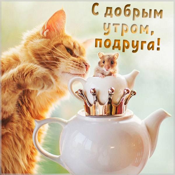 Смешная открытка с добрым утром подруге - скачать бесплатно на otkrytkivsem.ru