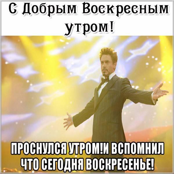 Смешная открытка с добрым воскресным утром - скачать бесплатно на otkrytkivsem.ru