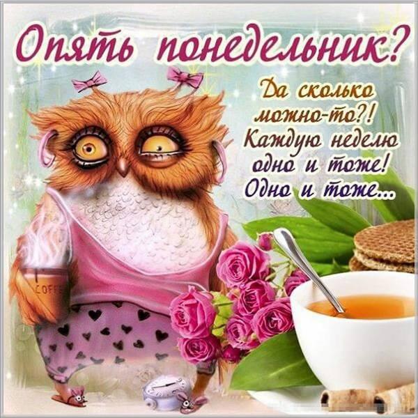 Смешная утренняя картинка опять понедельник - скачать бесплатно на otkrytkivsem.ru