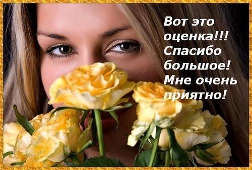 Спасибо за оценку анимация - скачать бесплатно на otkrytkivsem.ru