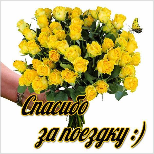 Спасибо за поездку в картинке - скачать бесплатно на otkrytkivsem.ru