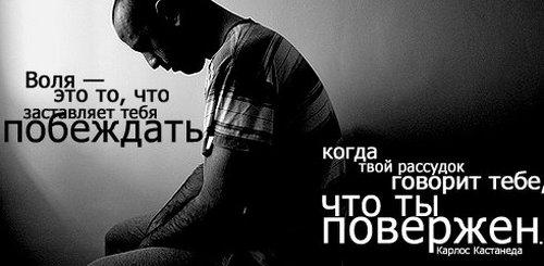 Статус в картинках - скачать бесплатно на otkrytkivsem.ru
