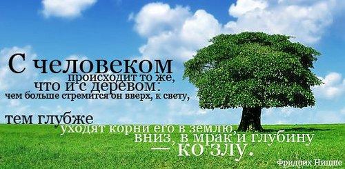 Статусы - скачать бесплатно на otkrytkivsem.ru