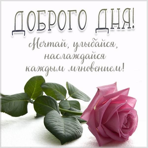 Стильная открытка доброго дня - скачать бесплатно на otkrytkivsem.ru