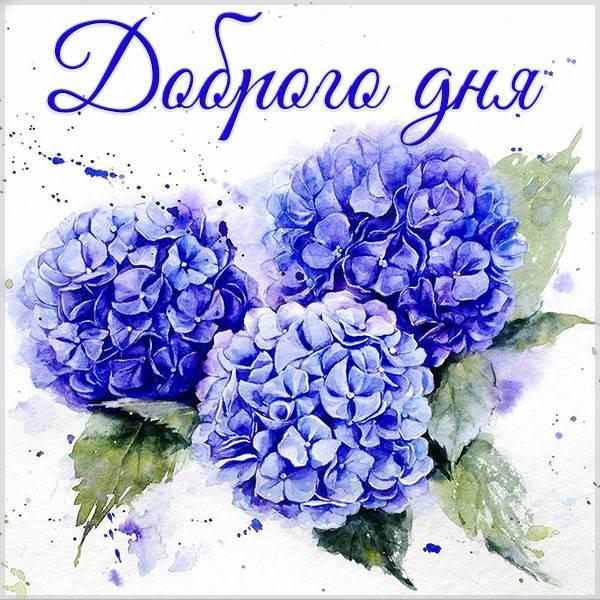 Стильная открытка с пожеланием доброго дня - скачать бесплатно на otkrytkivsem.ru