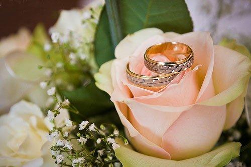 Свадьба кольца - скачать бесплатно на otkrytkivsem.ru