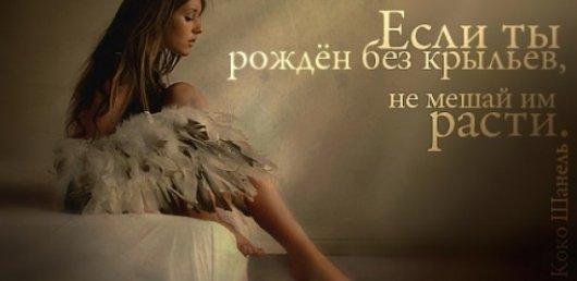 ЦИТАТА - скачать бесплатно на otkrytkivsem.ru
