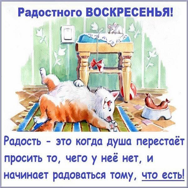 Веселая картинка про воскресенье с надписями - скачать бесплатно на otkrytkivsem.ru