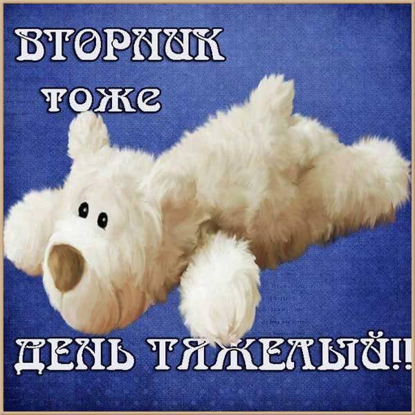 Веселая картинка про вторник с надписями - скачать бесплатно на otkrytkivsem.ru