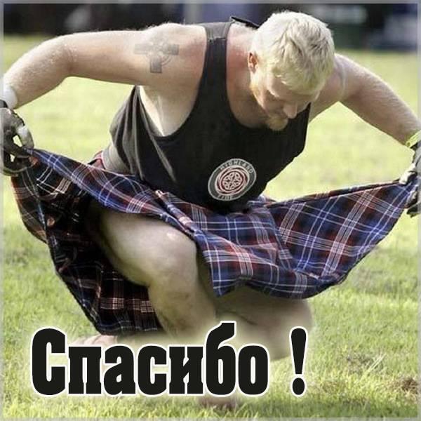 Веселая картинка спасибо - скачать бесплатно на otkrytkivsem.ru