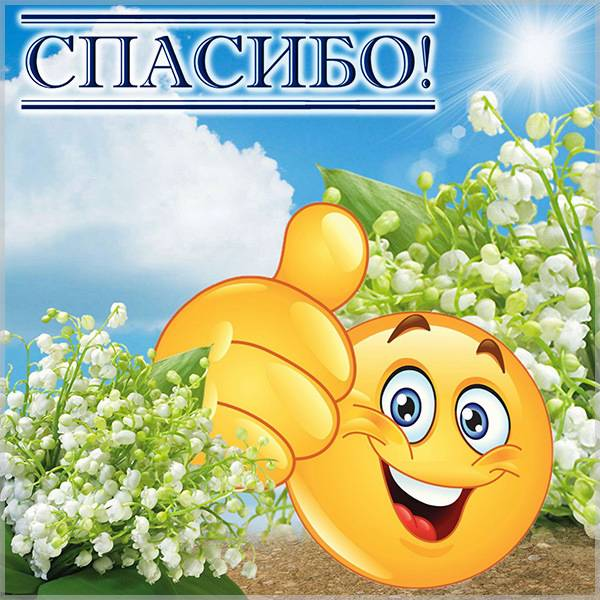Веселая открытка спасибо - скачать бесплатно на otkrytkivsem.ru