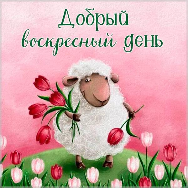 Весенняя картинка добрый воскресный день красивая - скачать бесплатно на otkrytkivsem.ru