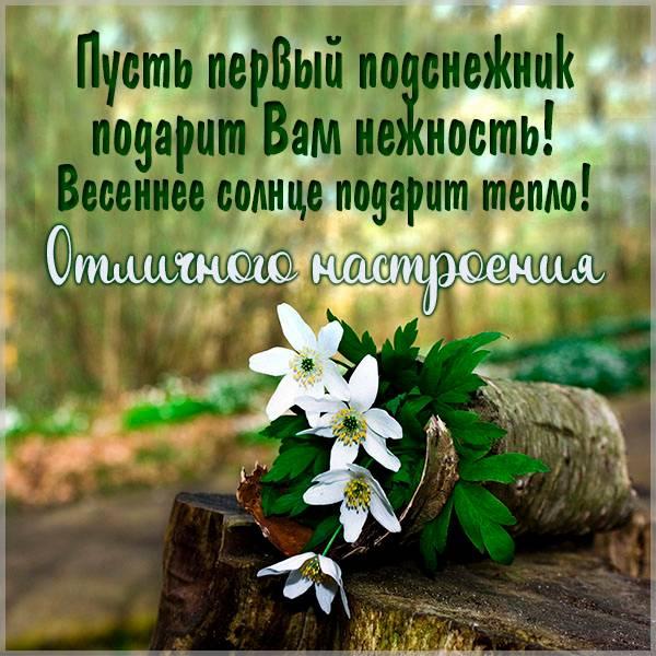 Весенняя картинка отличного настроения красивая - скачать бесплатно на otkrytkivsem.ru