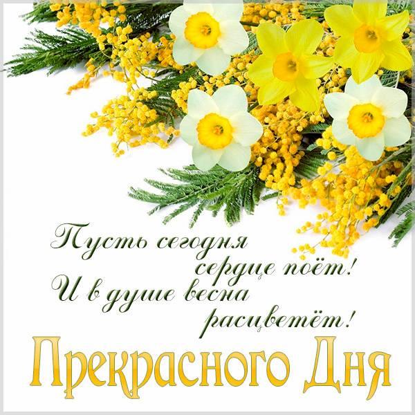 Весенняя картинка прекрасного дня красивая - скачать бесплатно на otkrytkivsem.ru