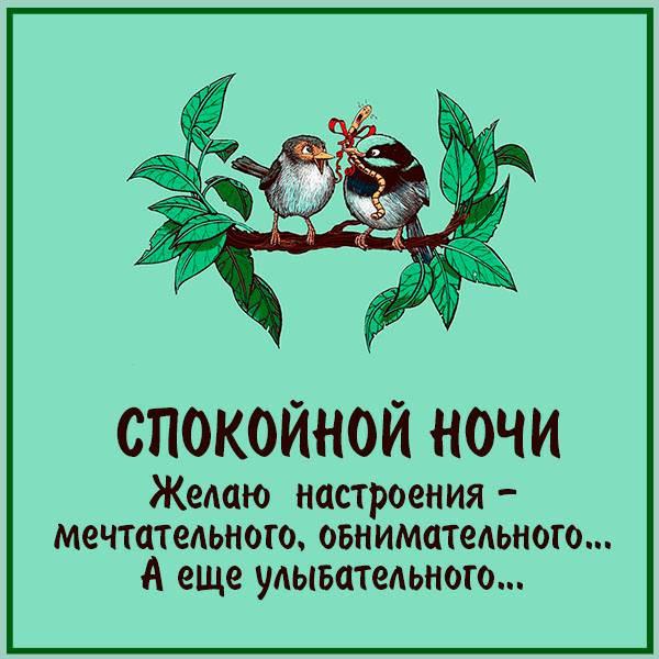 Весенняя картинка спокойной ночи смешная - скачать бесплатно на otkrytkivsem.ru