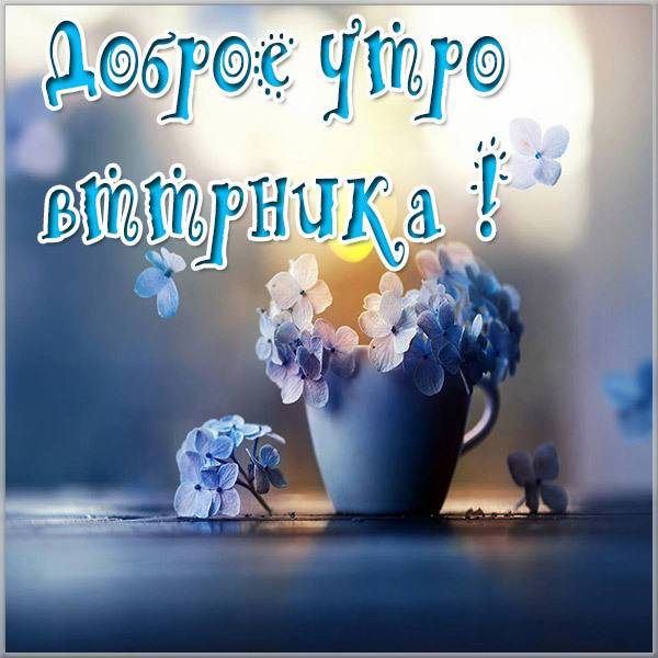 Весенняя открытка доброе утро вторника - скачать бесплатно на otkrytkivsem.ru