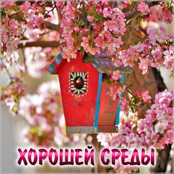 Весенняя открытка хорошей среды - скачать бесплатно на otkrytkivsem.ru
