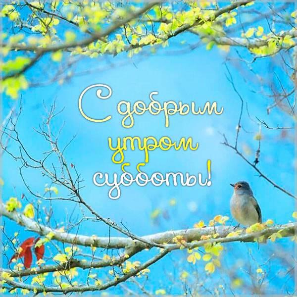 Весенняя открытка с добрым утром субботы - скачать бесплатно на otkrytkivsem.ru