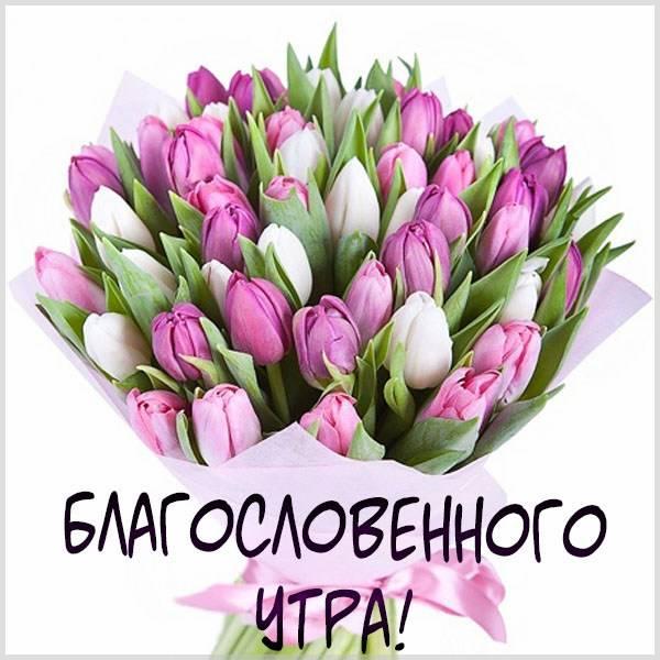 Виртуальная картинка благословенного утра - скачать бесплатно на otkrytkivsem.ru