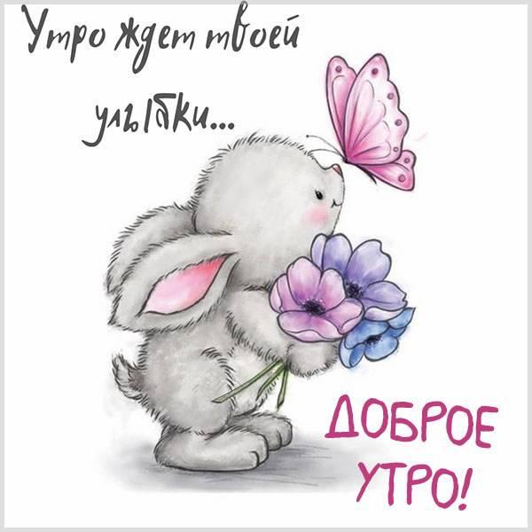 Виртуальная картинка доброе утро позитив - скачать бесплатно на otkrytkivsem.ru