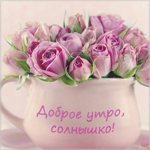Виртуальная картинка доброе утро солнышко - скачать бесплатно на otkrytkivsem.ru